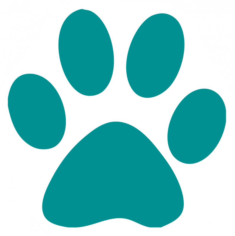 797x800 Pictures Of Cat Paw Prints Free Download Clip Art