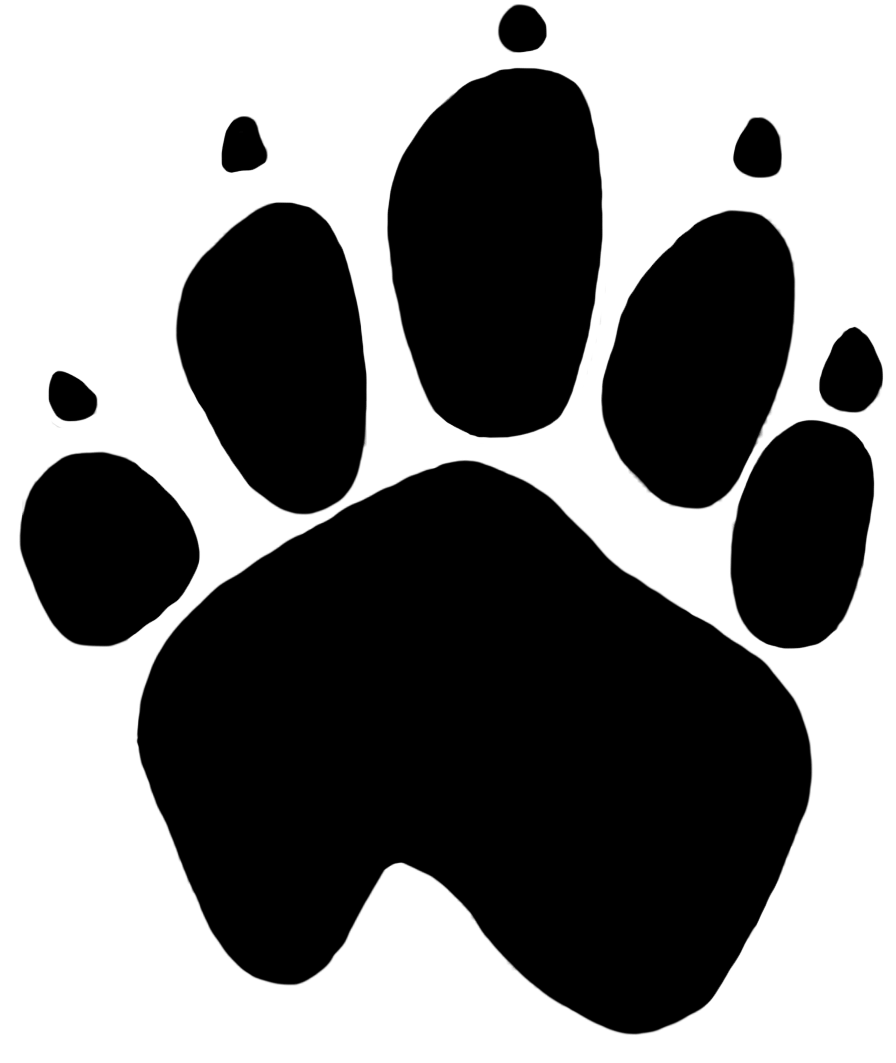 896x1063 Cat Paw Print Transparent Png