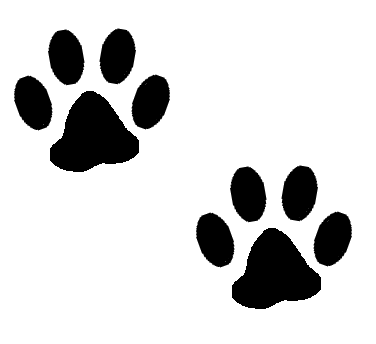 376x344 Graphics For Kitty Cat Paw Print Graphics