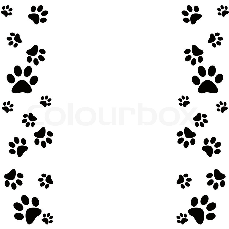 800x800 Paw Clipart Frame