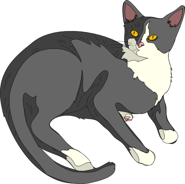 600x598 Gatto Cat 3 Clip Art
