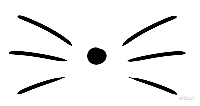 800x426 Whiskers Clipart