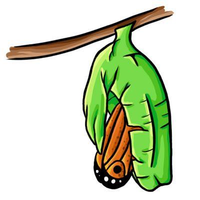 Caterpillar Food Cliparts