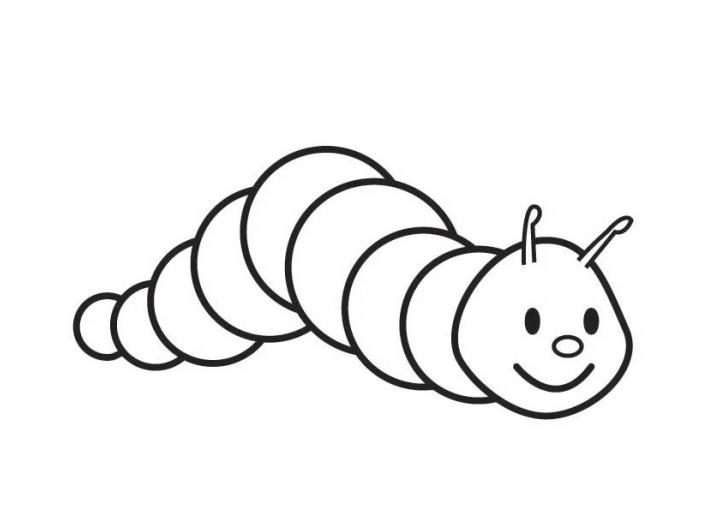 728x512 Caterpillar Clipart Outline