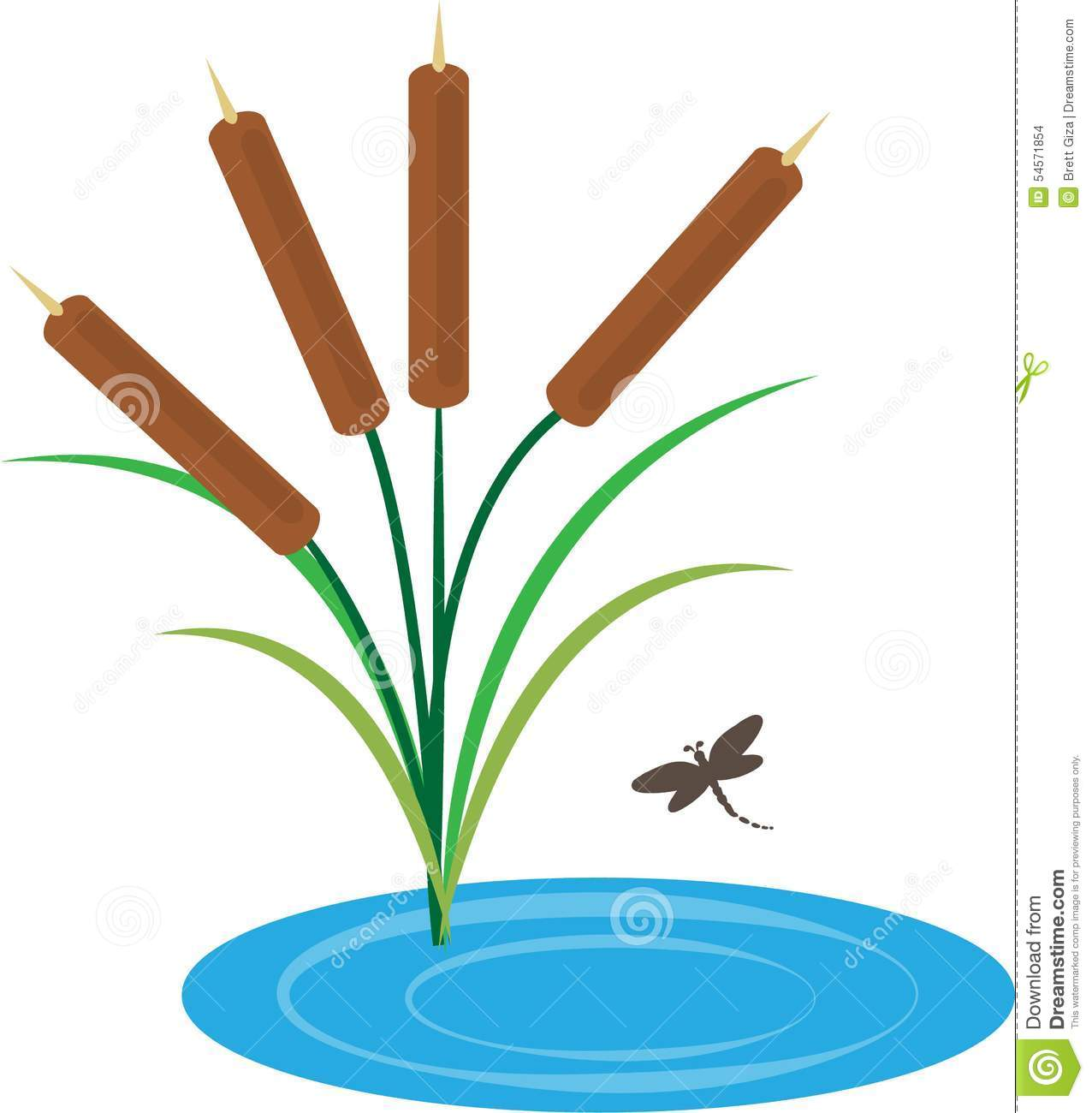 1276x1300 Cattails In Pond Clip Art Cliparts