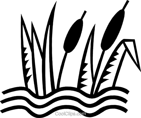 480x404 Cat Tails Royalty Free Vector Clip Art Illustration Vc023823