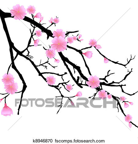 450x470 Clipart Of Branch With Cherry Blossoms K8946870