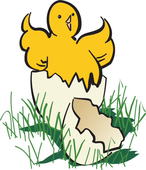 510x593 Baby Chick Hatching Clip Art