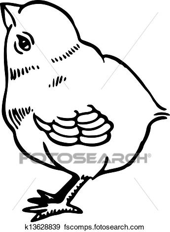 345x470 Stock Illustration Of Chick K13628839