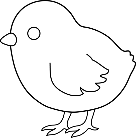 543x550 Cute Colorable Baby Chick