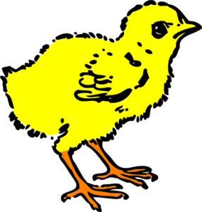 285x298 Chick Clipart Colorful