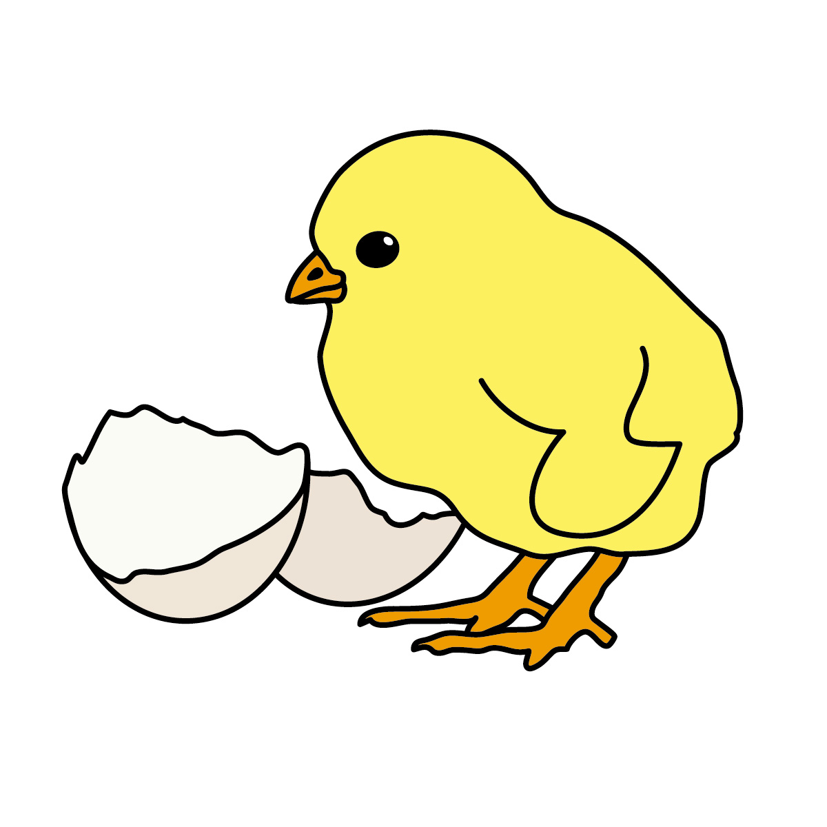 1200x1200 Baby Chick Clip Art