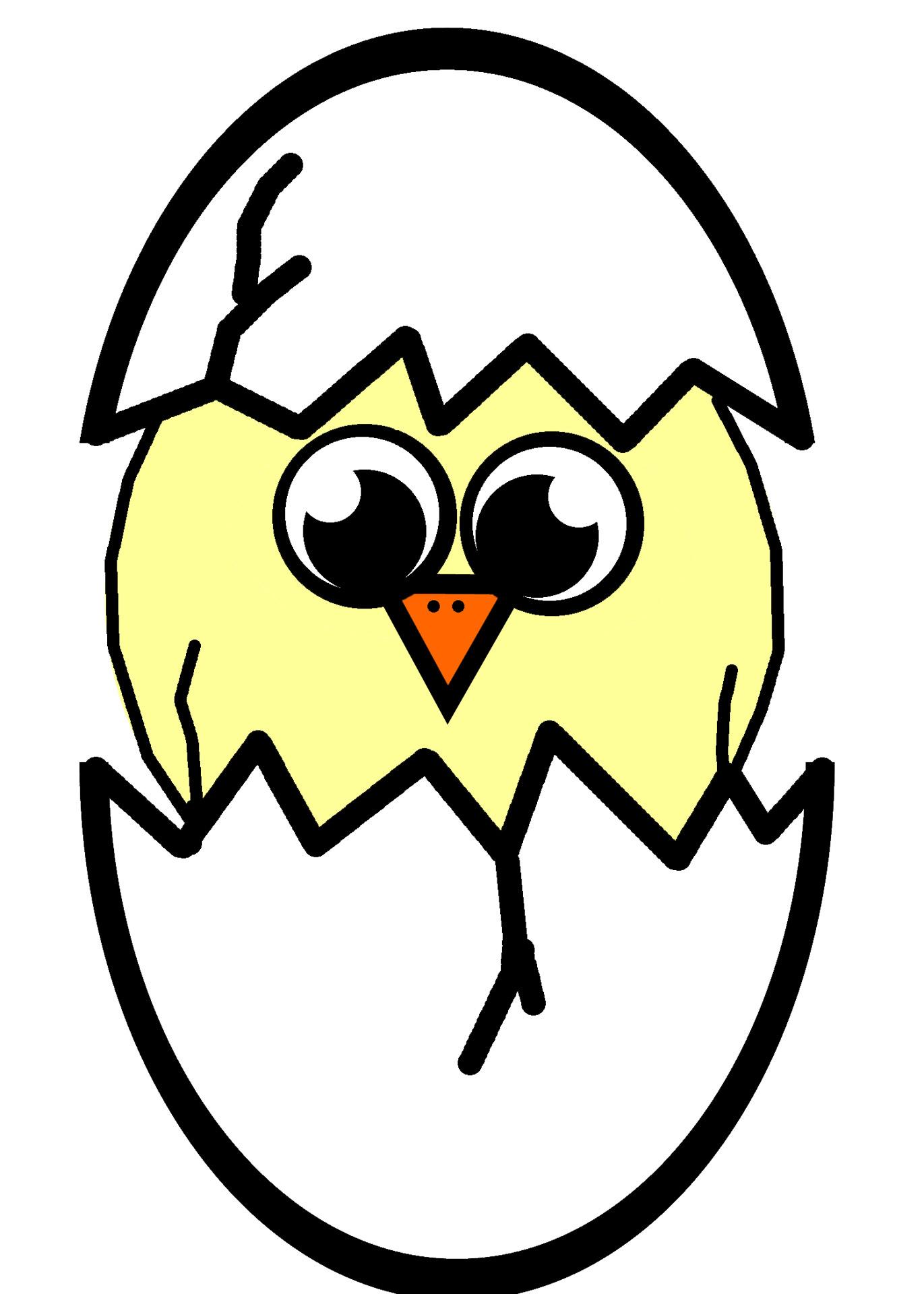 1371x1920 Hatching Chick Illustration Free Stock Photo