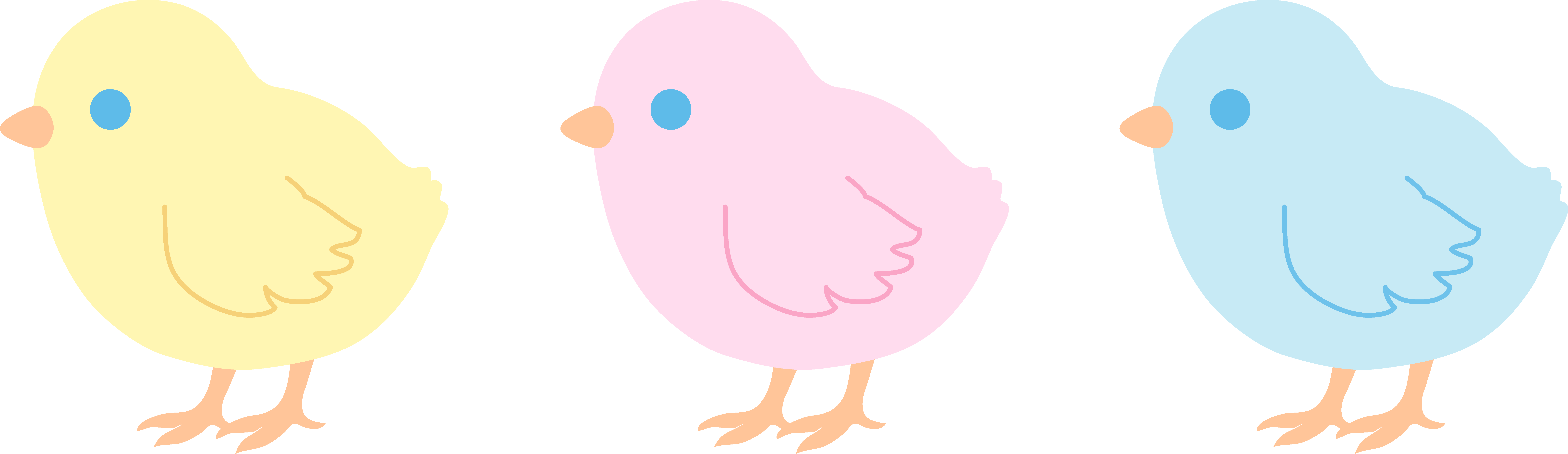 9537x2761 Three Cute Pastel Baby Chicks