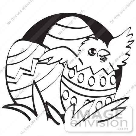 450x450 Royalty Free Cartoon Cliprt Baby Chicken Hatching Out