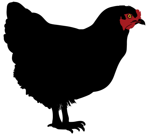 516x472 Chicken Silhouette Clip Art