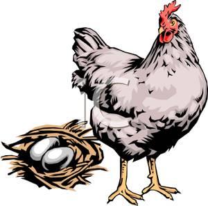 300x296 Chicken Clip Art