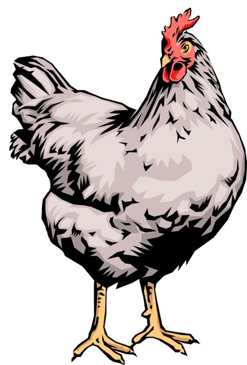 Chicken Dinner Clipart