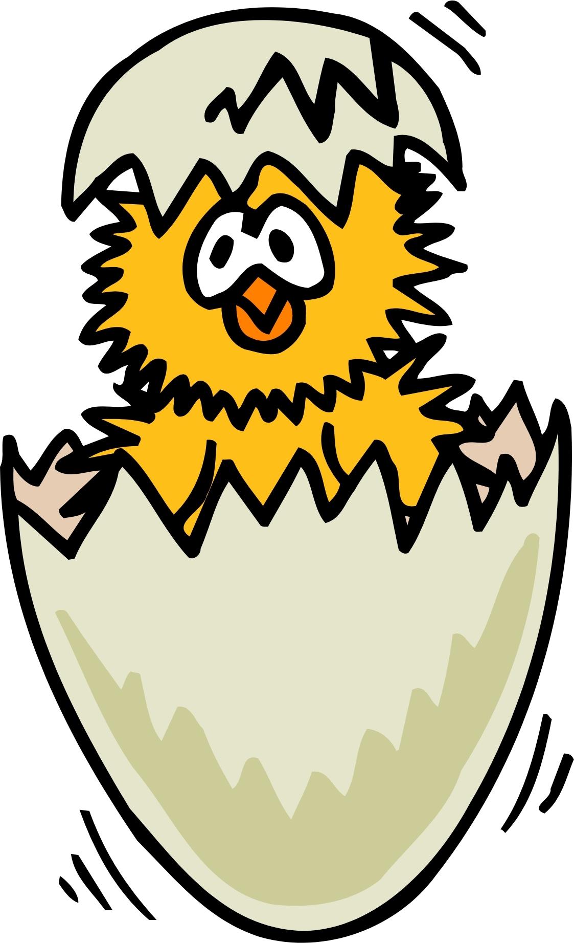 1123x1843 Egg Clipart Chick Egg