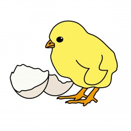 260x260 Chick Clipart Chicken And Egg
