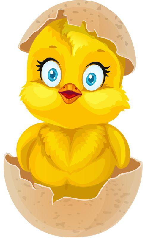 488x800 Chicken Egg Clipart
