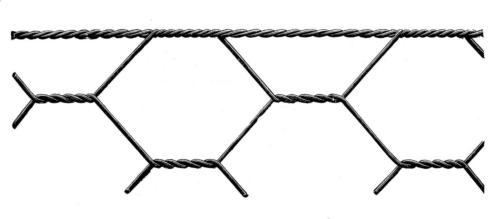 1600x705 Chicken Wire Graphic