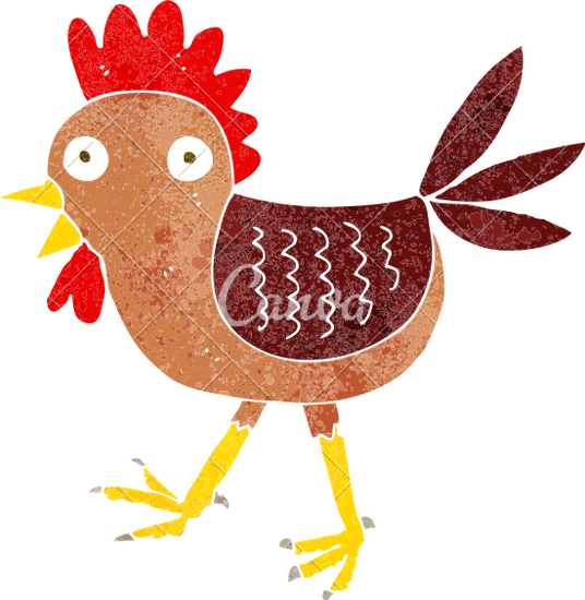 536x550 Funny Cartoon Chicken