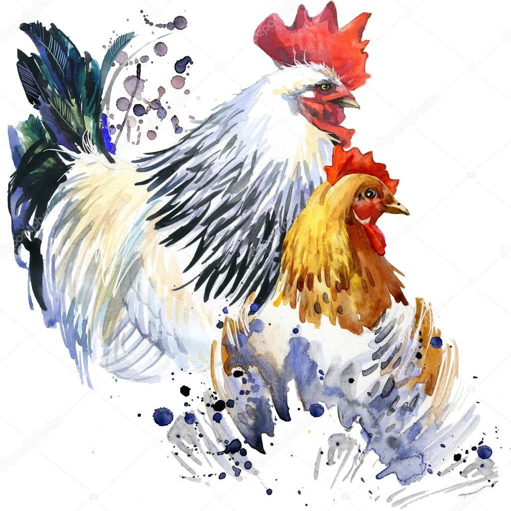 1024x1024 Rooster And Chicken Graphics, Rooster And Chicken Illustration