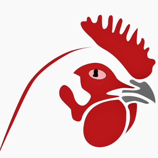 512x512 Ecochicks Poultry Ltd 0727087285