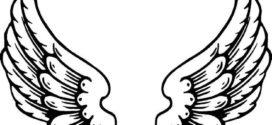272x125 Chicken Wing Clipart Clipart Panda