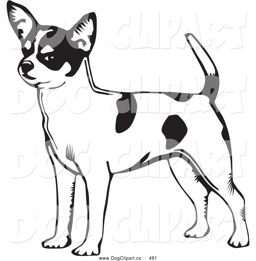 1024x1044 Vector Clip Art Of A Cute And Alert Short Haired Chihuahua Dog