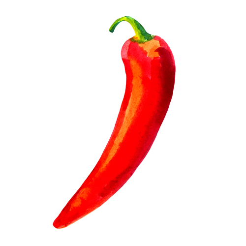 Chili Pepper Images