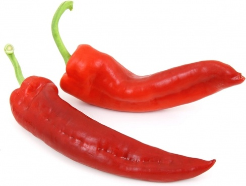 488x368 Free Hot Pepper Photos Free Stock Photos Download (1,154 Free