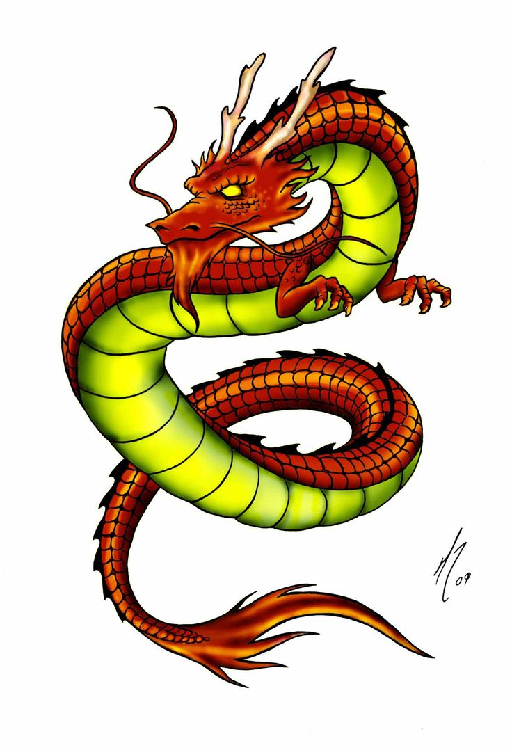 736x1078 Chinese Dragons Drawings With Color 12 Best Images About Chinese