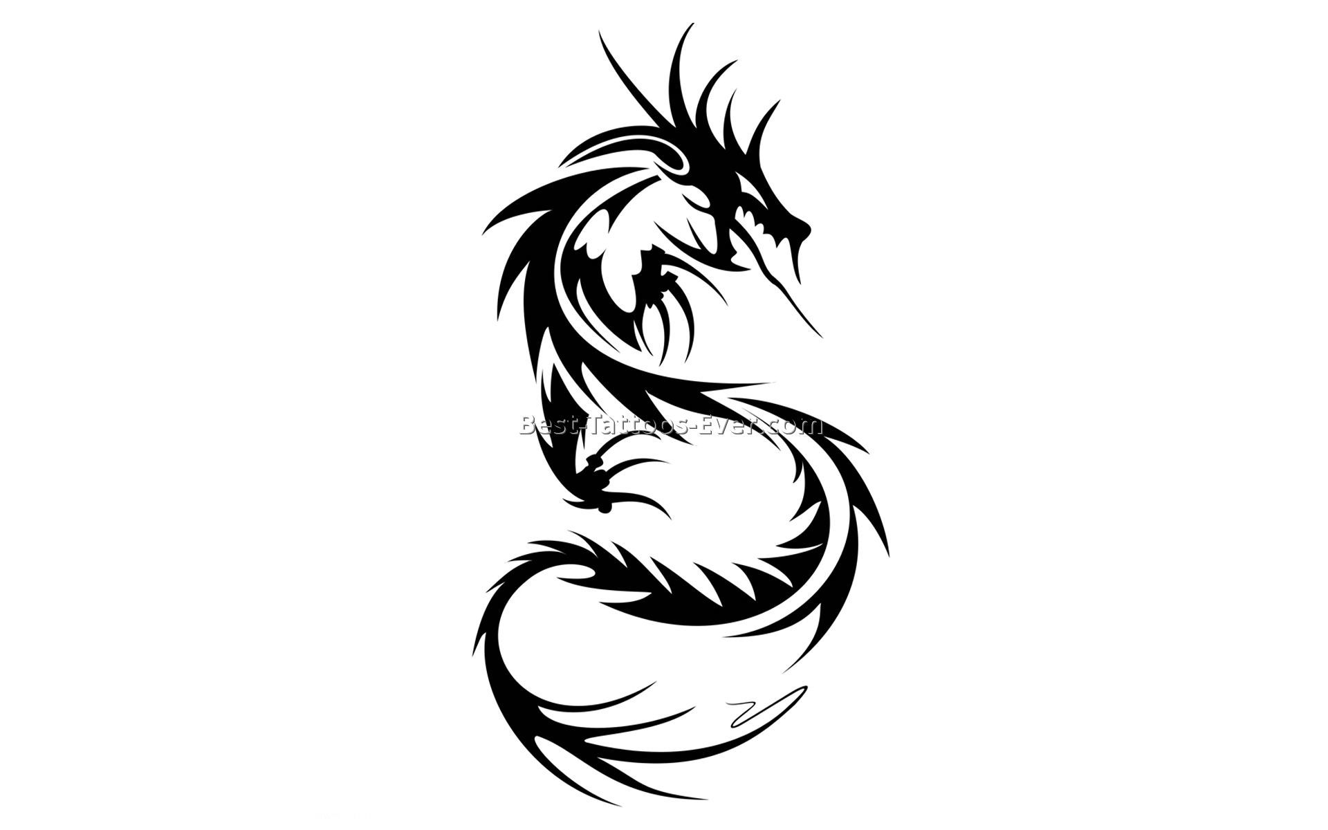 1920x1200 Collection Of Chinese Dragon Tattoo