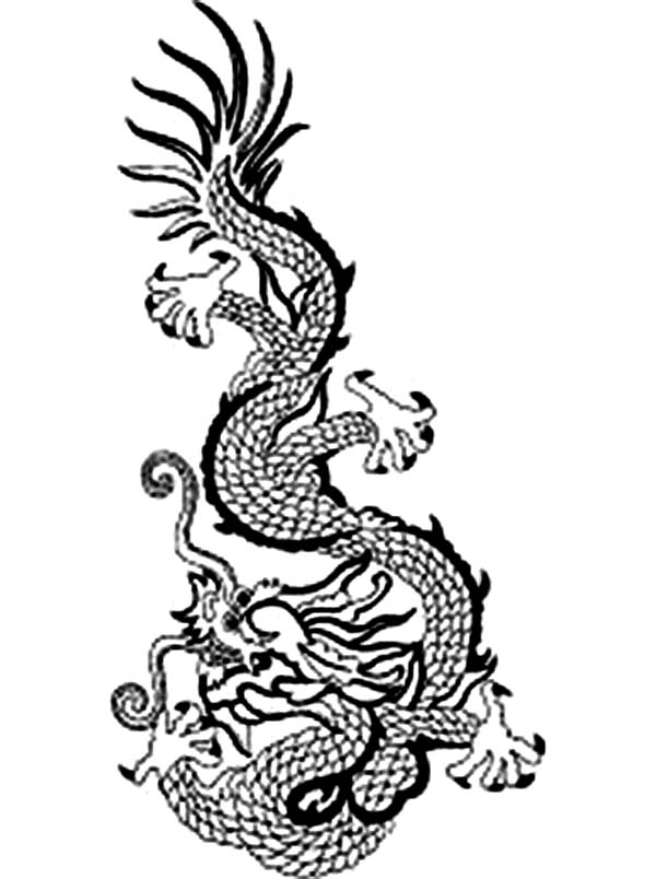 Ancient Chinese Dragons