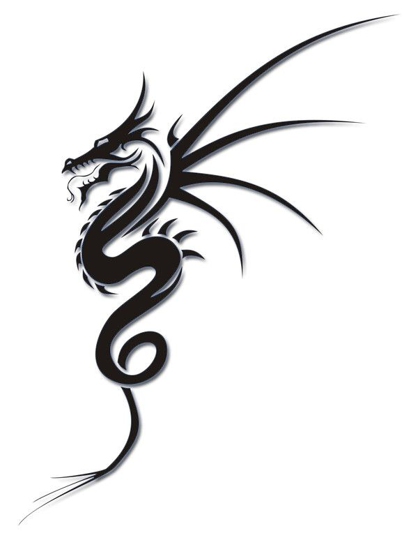 600x784 Best Tribal Dragon Tattoos Ideas Dragon Tattoo
