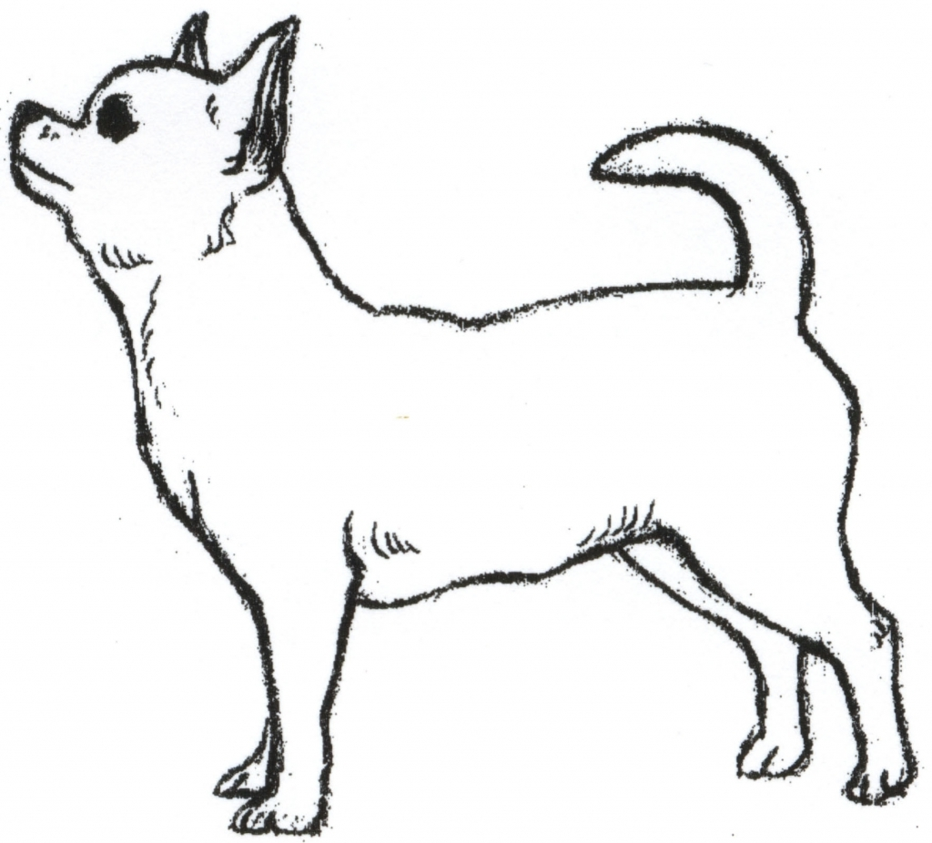 1024x926 Dancing Chihuahua Cliparts 201316