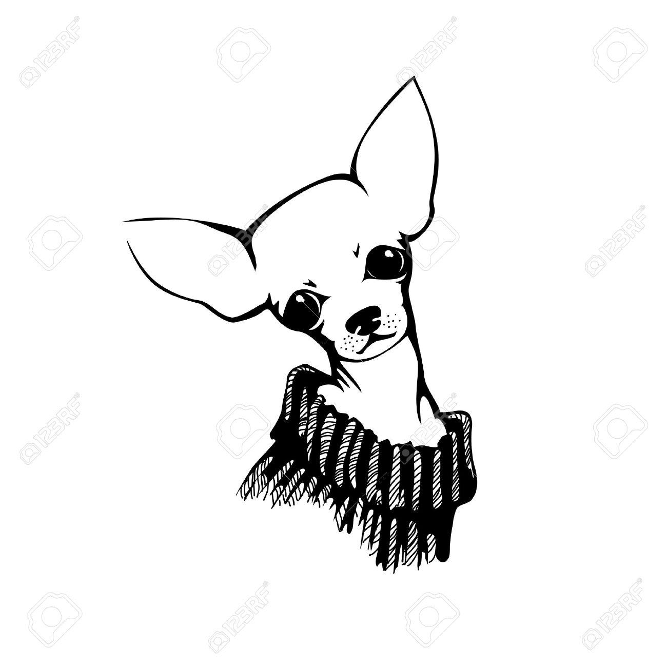 1300x1300 Drawn Chihuahua Black And White