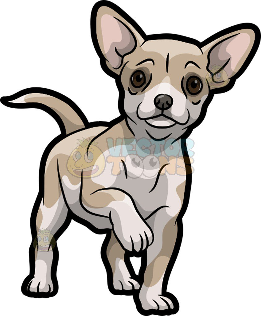 844x1024 A Cute And Adorable Chihuahua Cartoon Clipart
