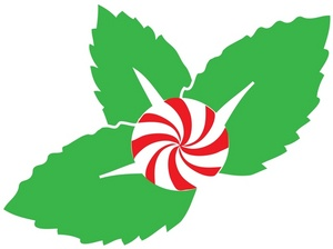 300x224 Free Peppermint Clipart Image