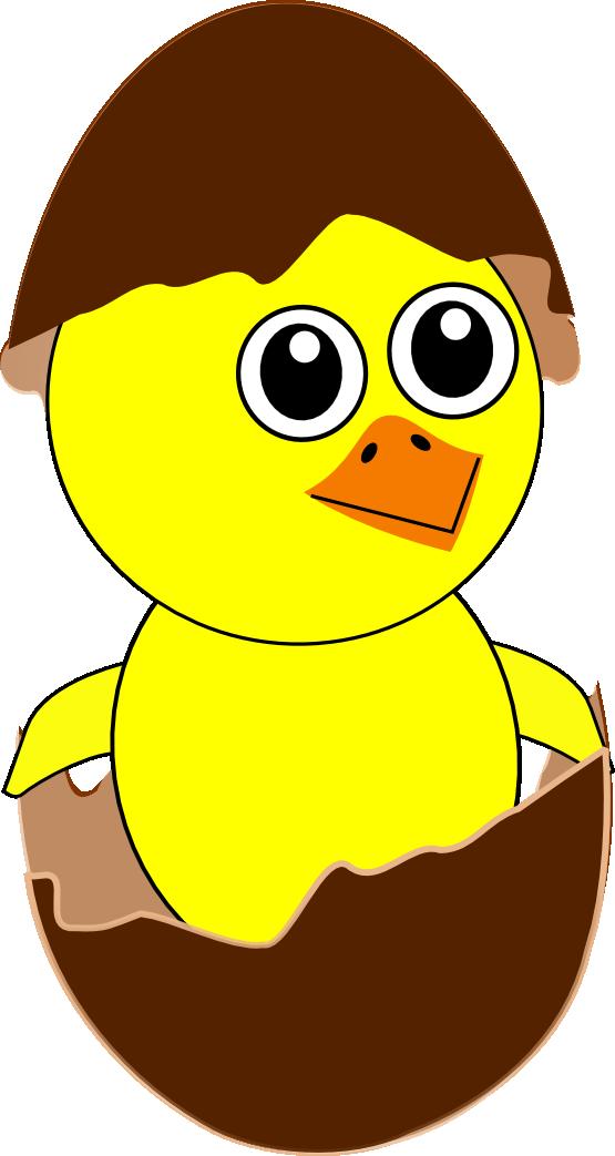 555x1043 Clip Art Chick 8 Newborn Egg Cartoon Chocolate