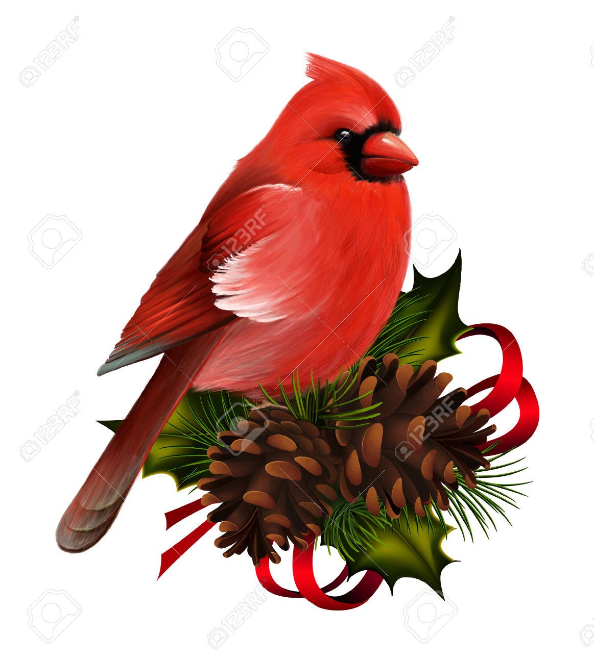1163x1300 Christmas Clipart Cardinal