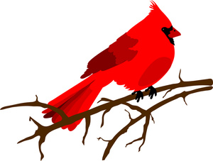300x227 Clip Art Illustration Of A Red Cardinal Bird Sitting On A Branch