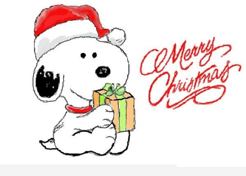 800x571 Merry Christmas Cartoon With Animation Pictures