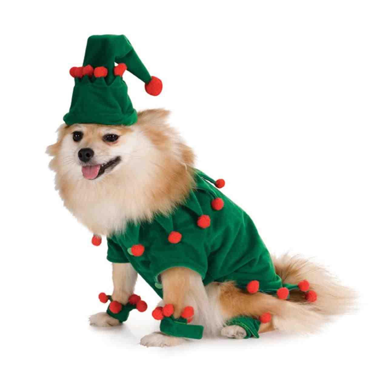 1264x1264 Christmas Dog Clipart Cartoon Clip Art Illustration Cute Stock
