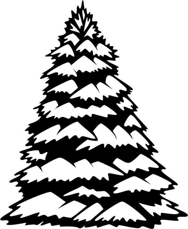 642x784 Pine Tree Clipart Spruce