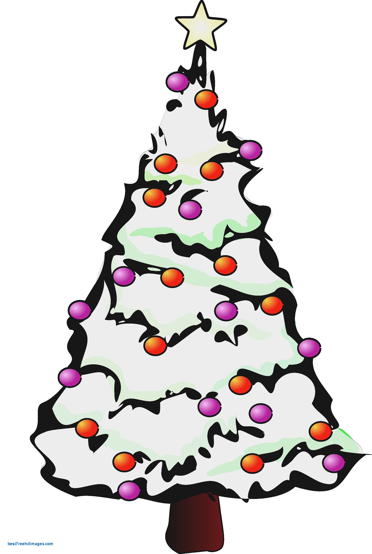 1979x2950 Small Christmas Tree Clip Art Free