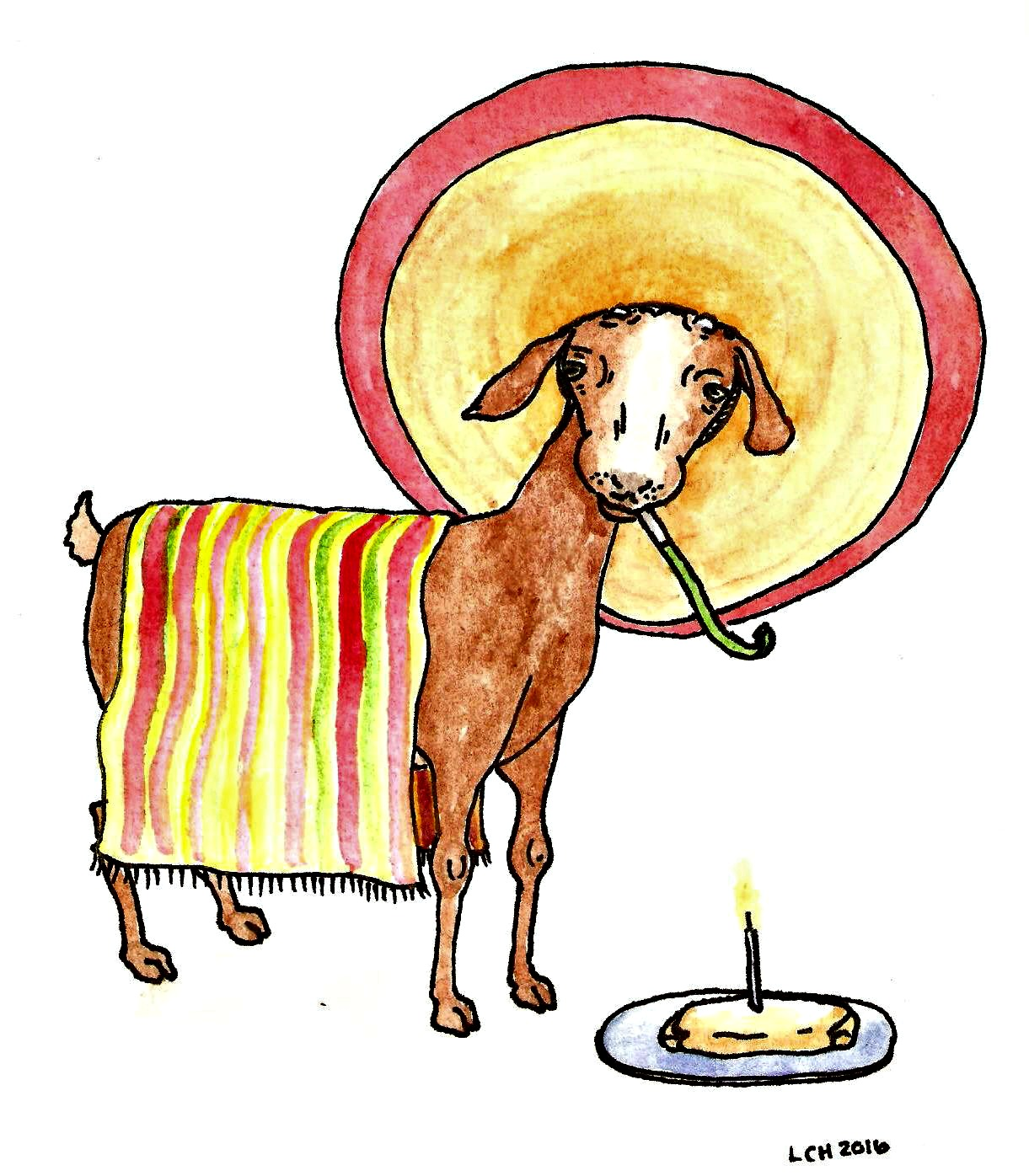 1221x1396 Cinco De Mayo Birthday Goat