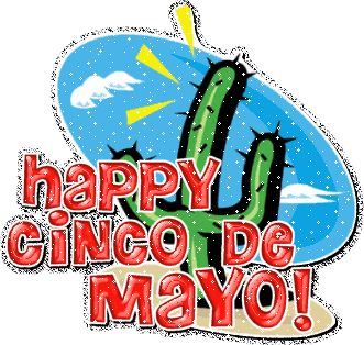 331x314 Best Cinco De Mayo Gif Ideas Taco Cat, Gatito